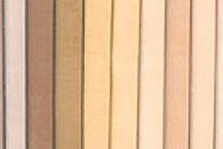 Skin tone palette